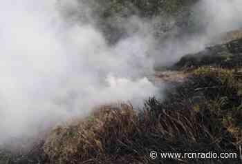 Organismos de socorro controlaron incendios en el Meta - RCN Radio