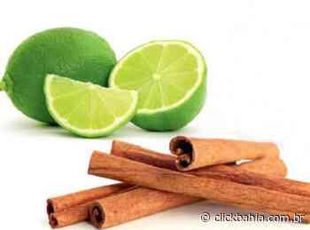 Canela e limão: um remédio sensacional com várias funções - Arial
