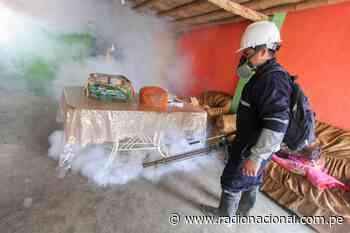 Ica: autoridades reportan 459 casos de dengue en la región - Radio Nacional del Perú