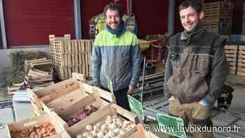 La zone maraîchère de Wavrin garde son marché du samedi matin - La Voix du Nord