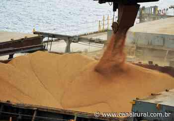 Soja alcança R$ 102 no porto de Rio Grande; veja cotações - Canal Rural