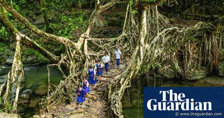 Living bridges and supper from sewage: can ancient fixes save our crisis-torn world?