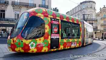 Coronavirus : à Montpellier, TaM et la Métropole décident la gratuité du tramway et des bus - Midi Libre