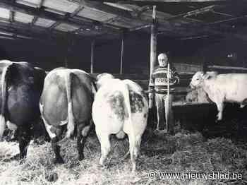 Laatste boerderij van Brussel krijgt woningen en landbouwpro... (Brussel) - Het Nieuwsblad