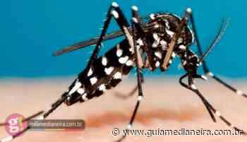 Missal confirma 91 casos positivos de dengue - Guia Medianeira