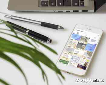 ACE Holambra reúne notícias para orientar empresas e pequenos negócios - O Regional