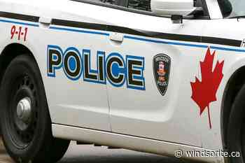 Wheatley Man Charged After Several Windsor Robberies - windsoriteDOTca News