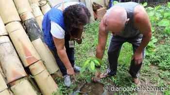 Combate ao Aedes aegypti é intensificado em Volta Redonda - Diario do Vale