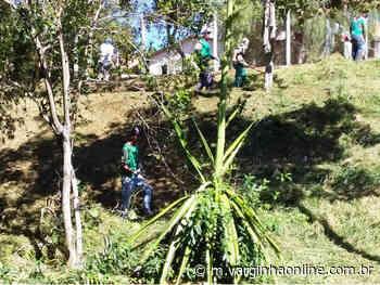 Prefeitura de Varginha faz manutenção nos Parques Municipais - Varginha Online