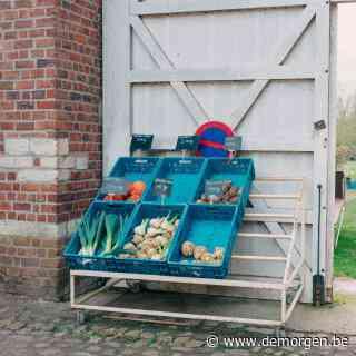 Dreigt er een tekort aan verse groenten en fruit in de supermarkt?