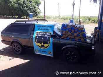 Ivinhema - Polícia Militar Rodoviária apreende quase 70kg de maconha - Nova News