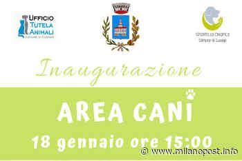 Cusago - Inaugurazione area cani il 18 gennaio ore 15:00 Via IV Novembre - Milano Post - MilanoPost