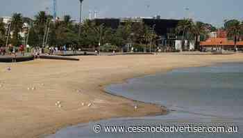 Vic health officer slams 'crap' beachgoers - Cessnock Advertiser