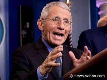 Fauci said he's 'willing to bet anything' that people who recover from the new coronavirus are 'really protected from reinfection'