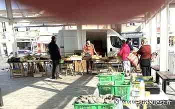 Gujan-Mestras : le marché a eu lieu ce samedi - Sud Ouest