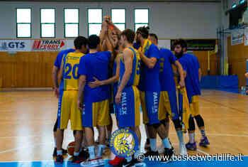Serie C Gold: Pallacanestro Molinella vs Fiorenzuola Bees non si giocherà: ufficiale la sospensione della gara - Basket World Life