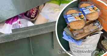 Bins overflow with out-of-date food bought in coronavirus panic