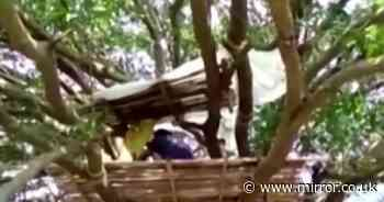 Indian villagers forced to self-isolate in trees with nowhere else to go
