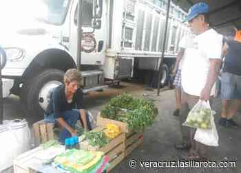En Mercados de Veracruz la necesidad obliga a vendedores a no parar - La Silla Rota