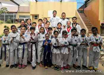 Alumnos de MUL DO TKD Veracruz entrenan en línea - El Dictamen