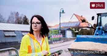 Top-Arbeitgeber: GeoData aus Westhausen plant die Netze von morgen - Schwäbische