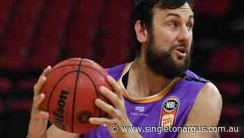 NBL's Kings happy to keep Bogut either way - The Singleton Argus