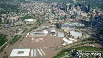 OPINION   COVID-19: Lessons for business owners from the Calgary flood