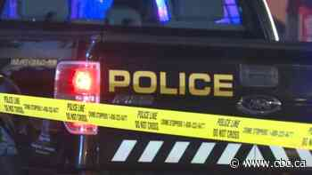 Man killed in northeast Calgary shooting