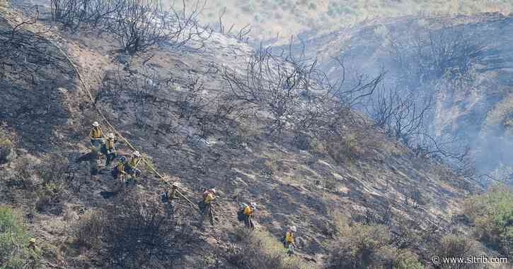 Letter: Preventing wildfires requires reductions in grazing