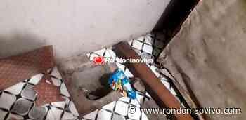 CANDEIAS: Patrulha Rural fecha boca de fumo e prende traficante em flagrante - Rondoniaovivo