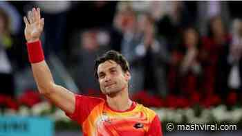 "David Ferrer retired from tennis: Goodbye to the ""best of the terrestrials"" - Mash Viral"