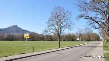 Hechingen: Obst- und Gartenbauverein Stetten: Noch zwei Paten gesucht: Lindenbäume als Zeichen für die Zukunft - SWP