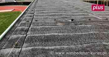 Förderung für Tribünen-Sanierung in Lampertheim - Wiesbadener Kurier