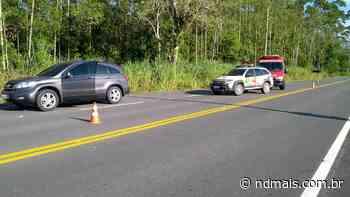 Homem é assassinado na Estrada Rio do Morro, em Araquari - ND - Notícias