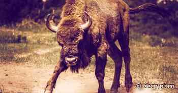 The bull case for China's Huobi Chain - Decrypt