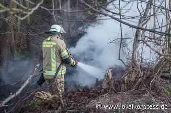 Feuerwehr Menden musste ausrücken - Ungewöhnlich für diese Jahreszeit: Erster Waldbrand gelöscht - Lokalkompass.de