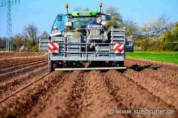 """Radolfzell: """"Das wird ein Desaster bei uns hier"""": Wie die Agrartechnik in Italien unter der Corona-Krise zum Stillstand kommt und was das für die Bauern hierzulande bedeutet. - SÜDKURIER Online"""