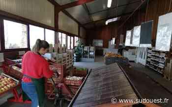 Gujan-Mestras : la ferme Saint-Henri ouverte, mais au ralenti - Sud Ouest