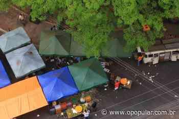Prefeitura de Rio Verde lança aplicativo de delivery para feirantes durante quarentena - Ludovica
