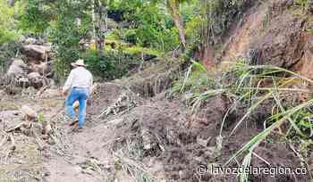 Acciones para atender emergencia por lluvias en Campoalegre - Noticias