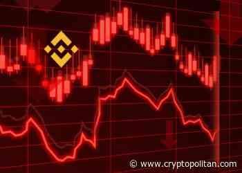 Binance Coin price falls below $11.30 - Cryptopolitan