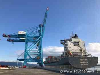 Covid-19, pienamente operativi i due terminal di Vado Ligure - SavonaNews.it