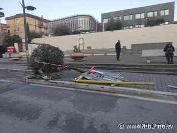 TOR LUPARA: perde il controllo della macchina e si schianta contro la fermata dell'autobus - Tiburno TV - Tiburno.tv