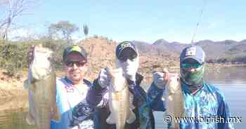 Desde Picachos, en Mazatlán, así se pescan lobinas - Big Fish