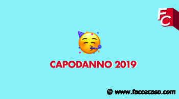 2019, il best of di Chiara Zane - FacceCaso