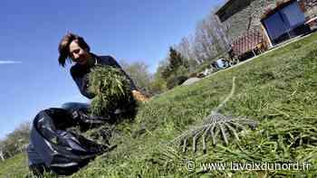 Barlin décide d'une collecte de déchets verts exceptionnelle assurée par la ville - La Voix du Nord