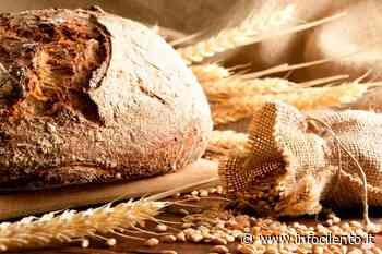 Sala Consilina: forni mettono a disposizione il pane per persone in difficoltà - Info Cilento