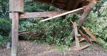 Nach den Stürmen sind um Lindau manche Wälder noch gesperrt - Schwäbische