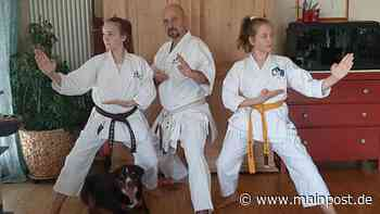 Tauberbischofsheim Karatemeister aus Tauberbischofsheim motiviert bei Youtube zum Training - Main-Post