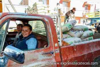 Otorgan material para vivienda en Loreto - Noticias - Express Zacatecas
